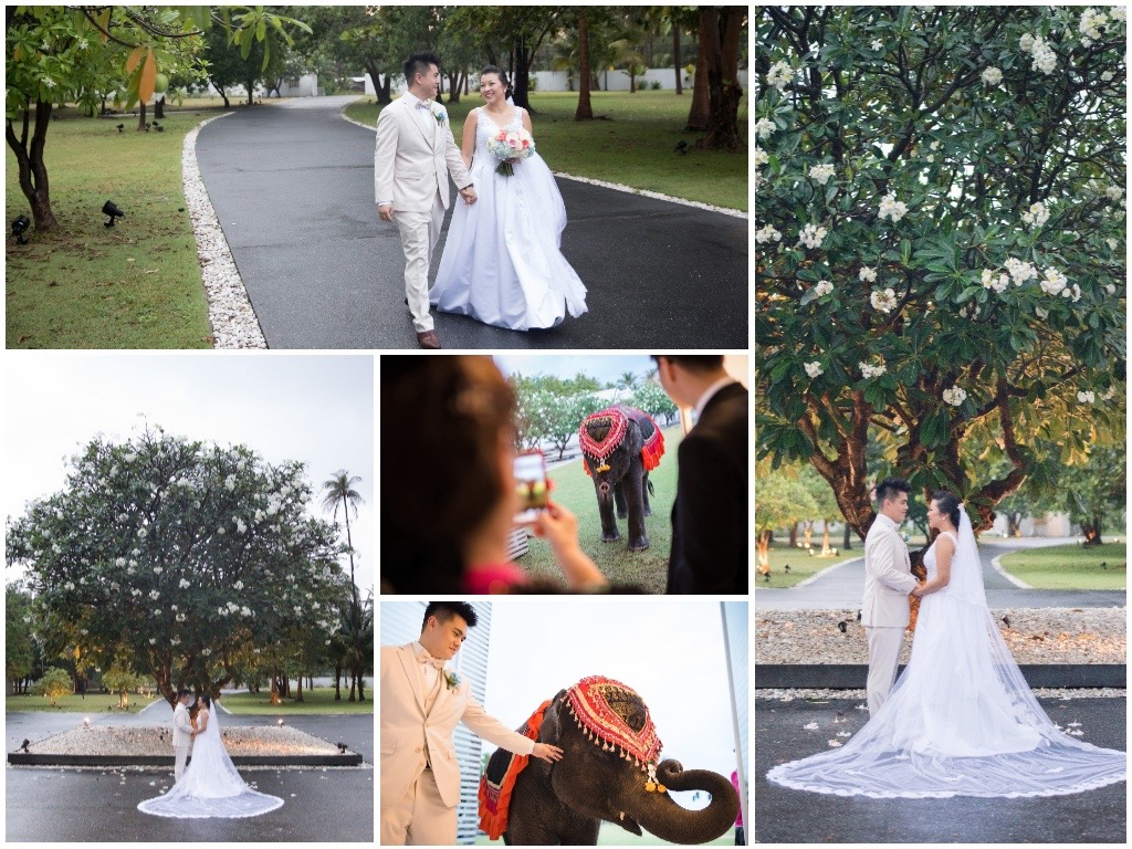Jenny and Calvin - The Wedding Bliss Thailand 6